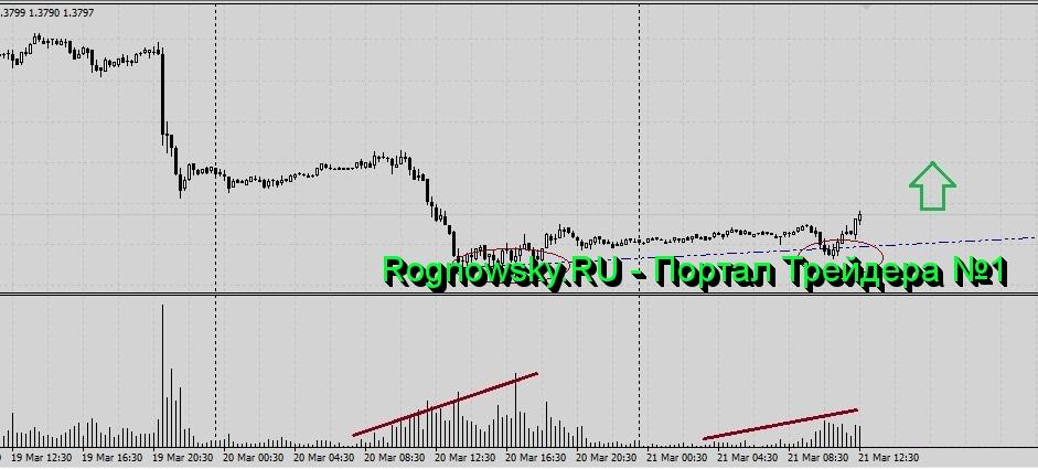 Обзор рынка форекс сегодня kurs valuta forex