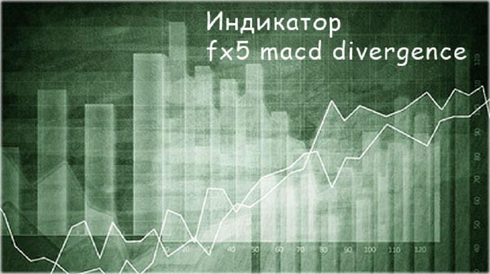 Индикатор дивергенции FX 5 MACD Divergence. Версия без перерисовки