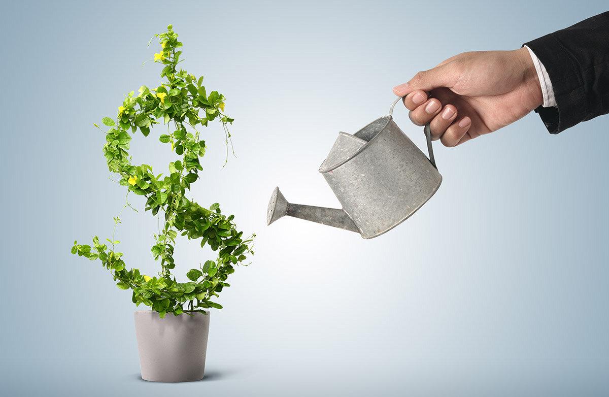 Выращивание капитала